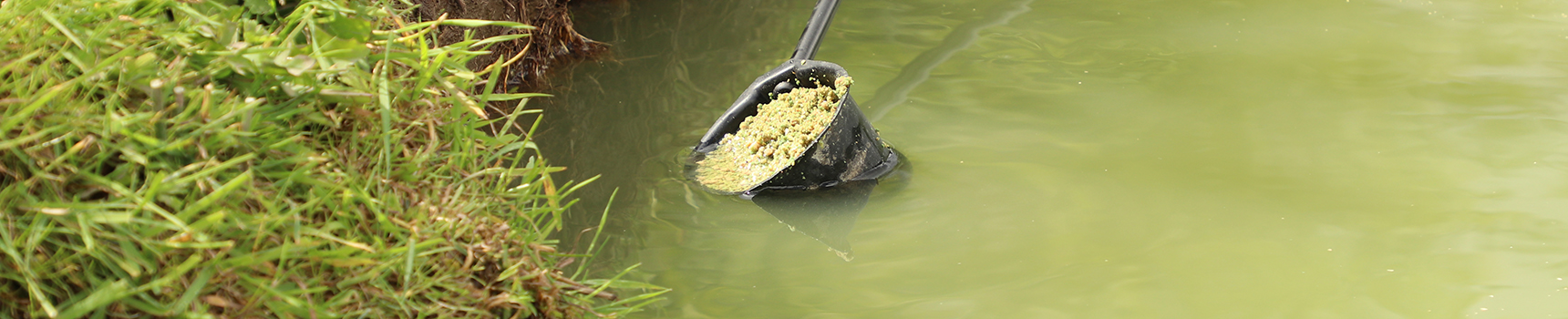 SWEET FISHMEAL GROUND BAIT