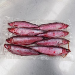 Sprat purple 8 pack