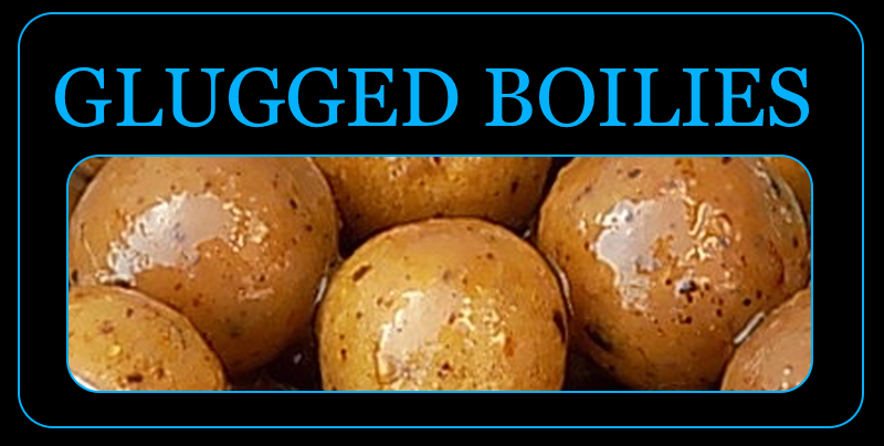 glugged boilies
