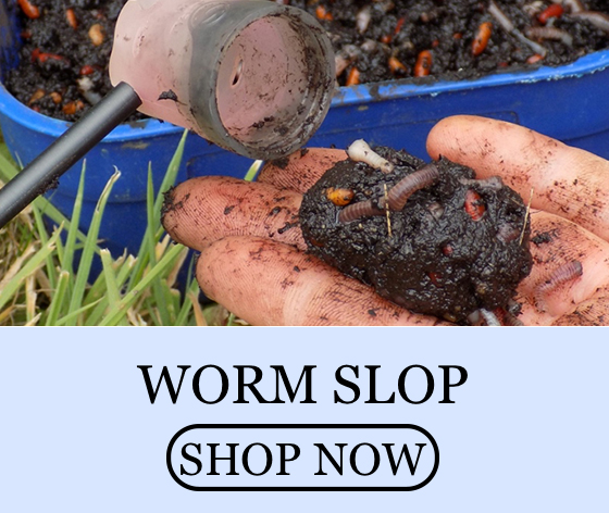 worm slop